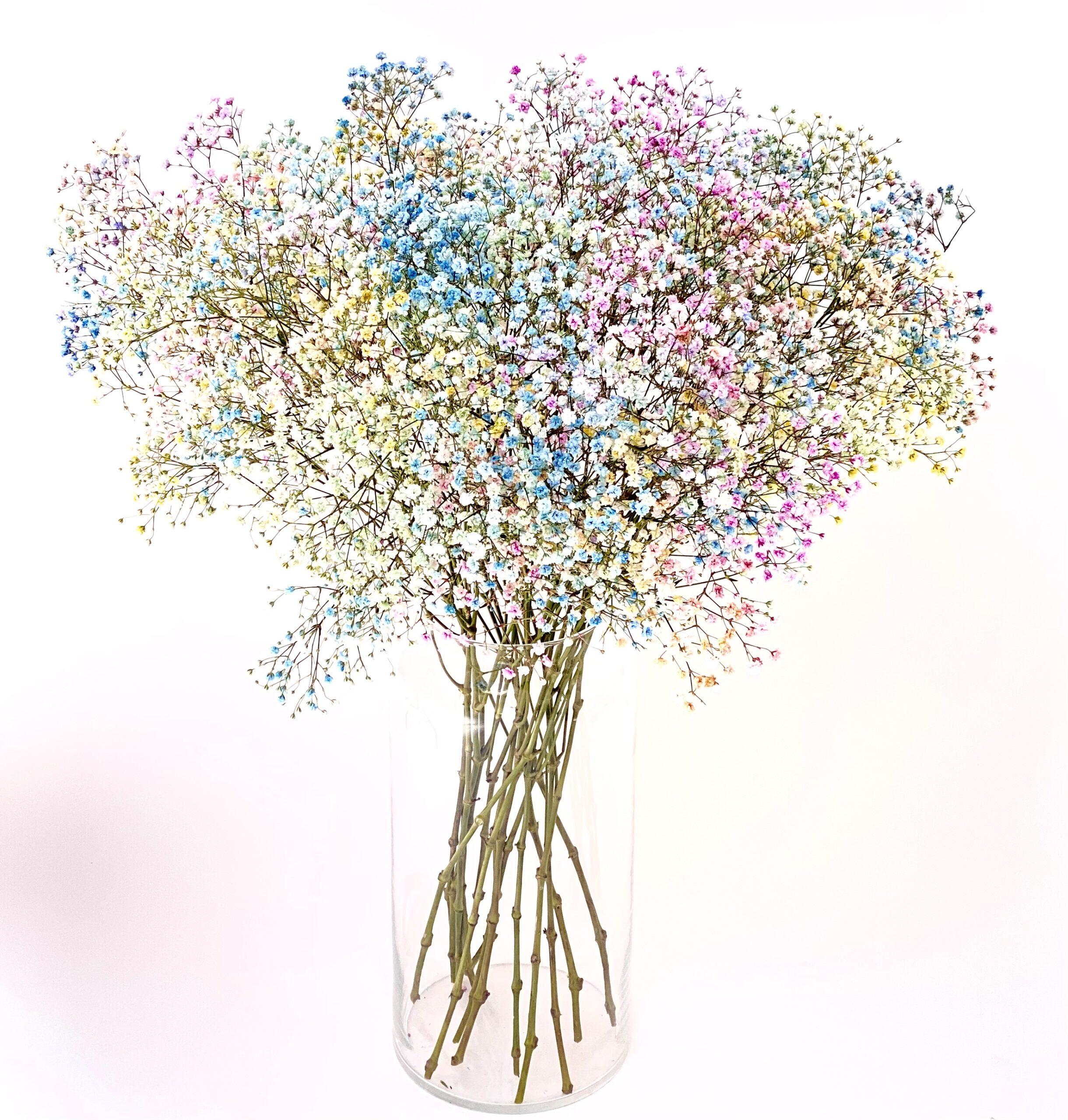 Gekleurd Gipskruid Bloemen Boeket Bestellen
